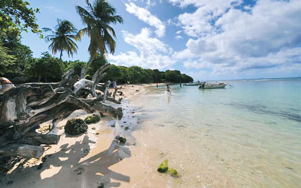 09 petithavre beach w