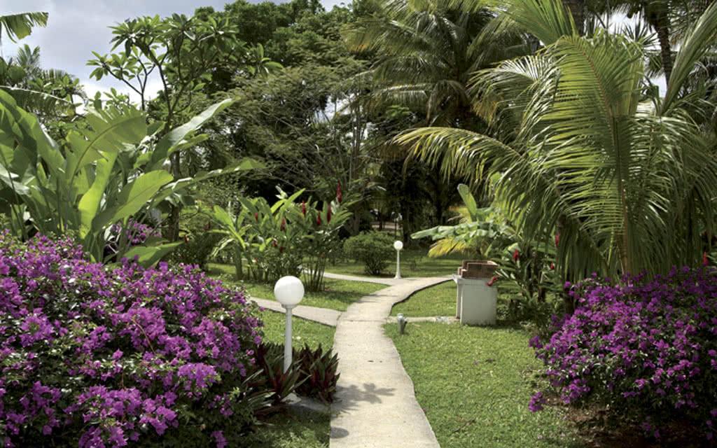 12 fleursdiles garden2