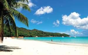 Bienvenue dans un paradis tropical