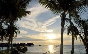 coucher de soleil sur un hamac