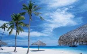 plage avec parasol en chaume