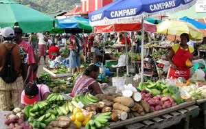 Excursion Demi journée Shopping à Castries - Sainte Lucie