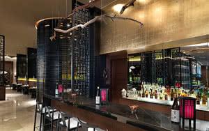 toji bar hotel family concierge at paradisus la esmeralda