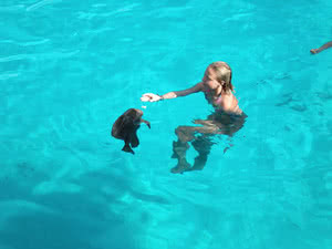 plongée eaux turquoises croisière seychelles catamaran