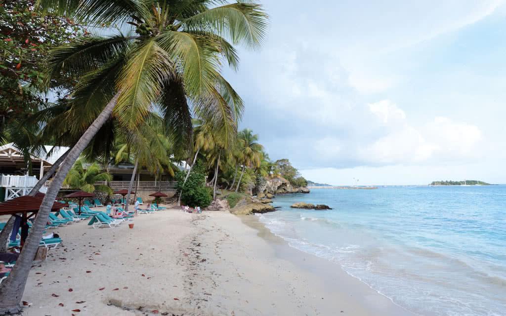 16-gua-vieilletour-beach02