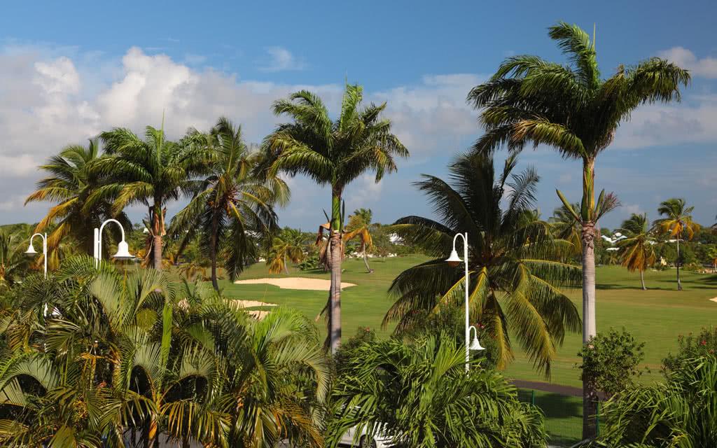 vues-golf11
