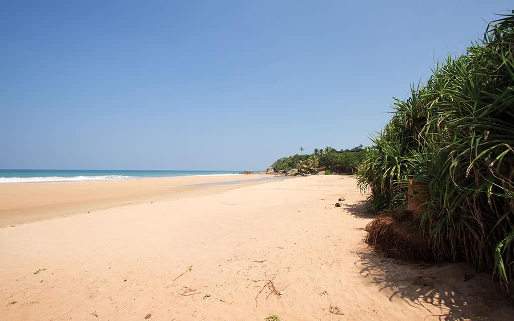 Circuit Sri Lanka L Ile Merveilleuse 4 Sri Lanka Avec