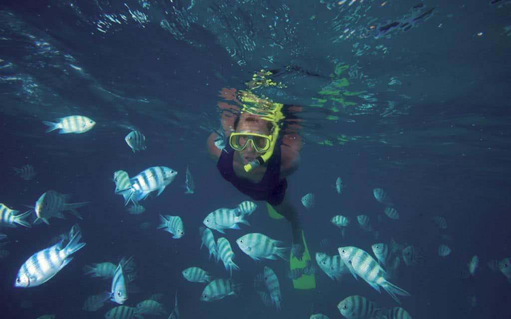 12-cerf-island-diving