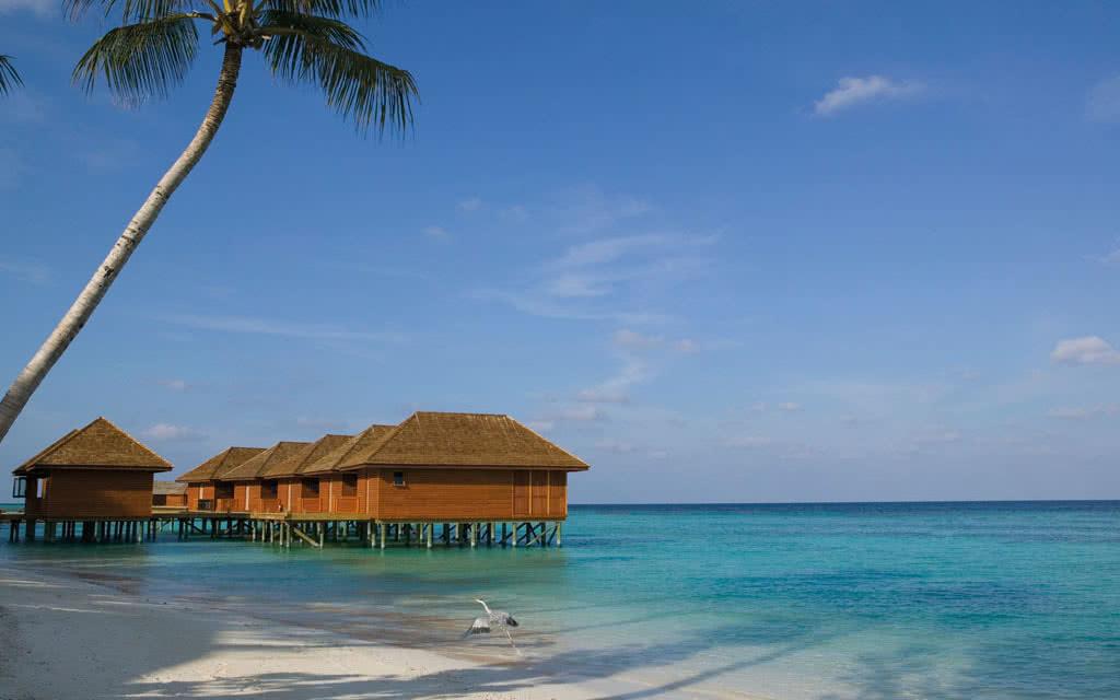 H tel veligandu island resort spa 4 voyage maldives for Sejour complet maldives