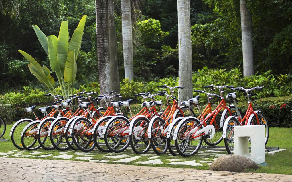 15-ppcana-bike