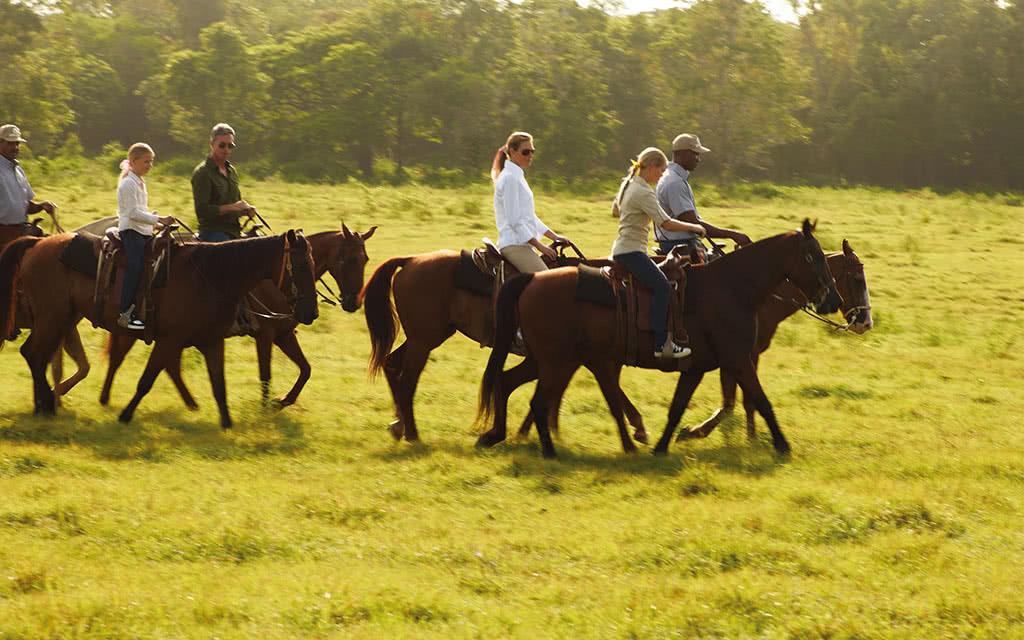 16-casacampo-equestrian