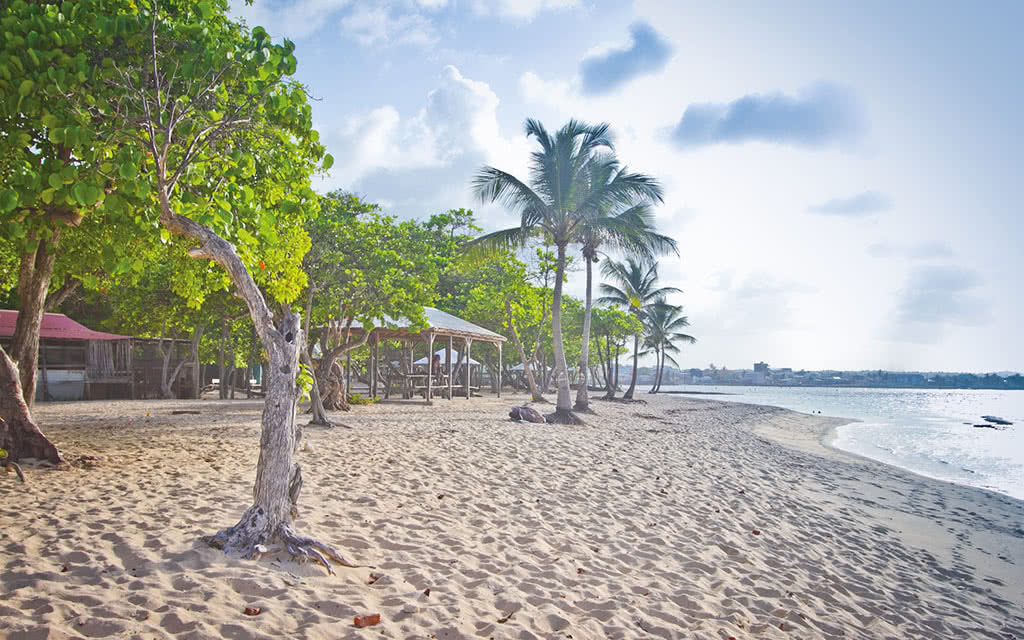 Résidence Tropicale