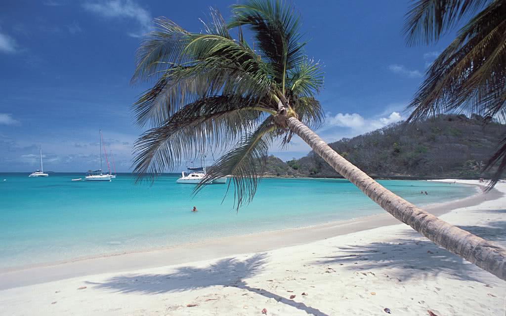 Martinique - Sainte Lucie - Saint-Vincent-et-les-Grenadines - Croisière Dream Caraïbes Premium